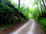 On the Run: Heading down the Katy Way Trail in Columbia, Missouri, on a rainy Sunday afternoon.